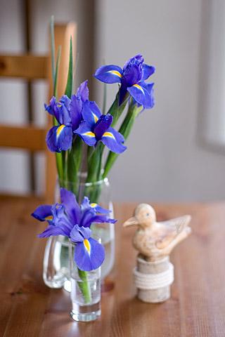 食卓にお花、アイリス