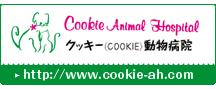 クッキー(COOKIE)動物病院HPはこちら