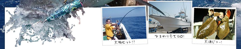 最近の釣果